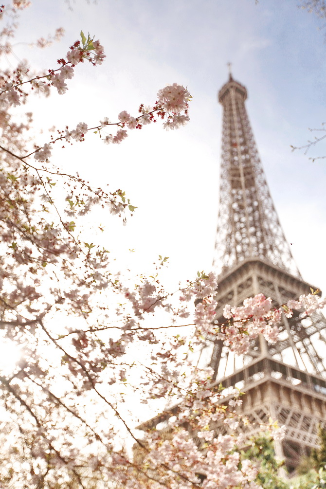 The-Cherry-Blossom-Girl-Blossoms-at-the-Eiffel-Tower-16